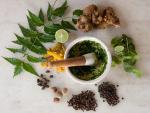 herbal medicine bristol