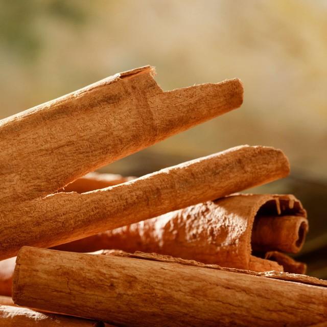 Cinnamon Tincture (Cinnamomum zeylanicum)